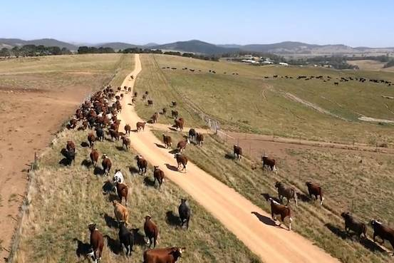 Ranchers across the Australian Outback are part of a trial project that uses data collected by NASA satellites